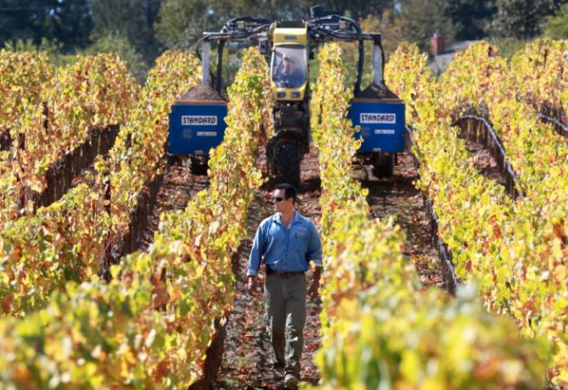 Small Vines Wines owner Paul Sloan works on special imported tractors from Europe designed to work in his narrowly planted vines. (JOHN BURGESS/ PD)