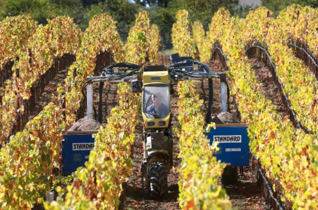 Small Vines Wines owners Paul and Kathryn Sloan imported special tractors from Europe designed to work in the narrowly planted vines.